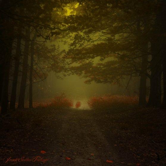 _alchymistas_secret_path__by_janek_sedlar-d5cr10a