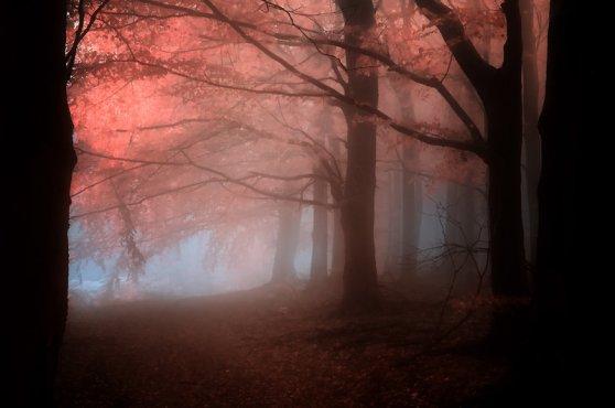 _ancient_melody_of_healing__by_janek_sedlar-d5iptzb