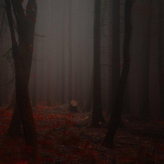 _deathly_hush__by_janek_sedlar-d5eo5ce
