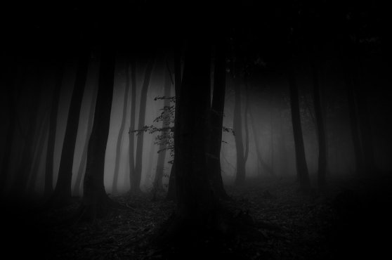 _light_without_dark_doesnt_exist__by_janek_sedlar-d5ixmwz