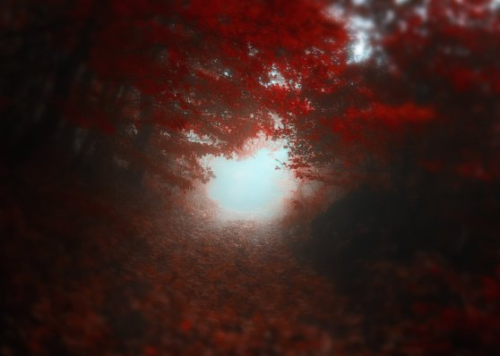 _road_to_self__by_janek_sedlar-d5jv4a9