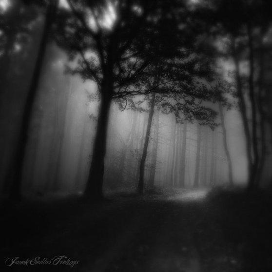 _spes_moritur_ultima__by_janek_sedlar-d5cyh80