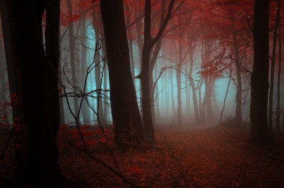 _strange_dream__by_janek_sedlar-d5hw8ow