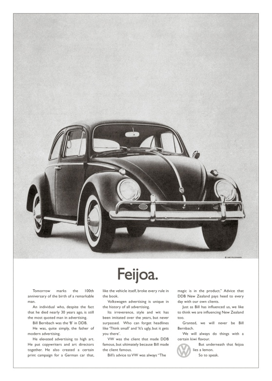 ddb_group_new_zealand_feijoa_ibelieveinadv