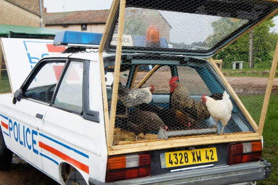 benedetto-bufalino-repurposes-a-police-car-as-a-chicken-coop-designboom-05
