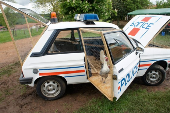 benedetto-bufalino-repurposes-a-police-car-as-a-chicken-coop-designboom-06